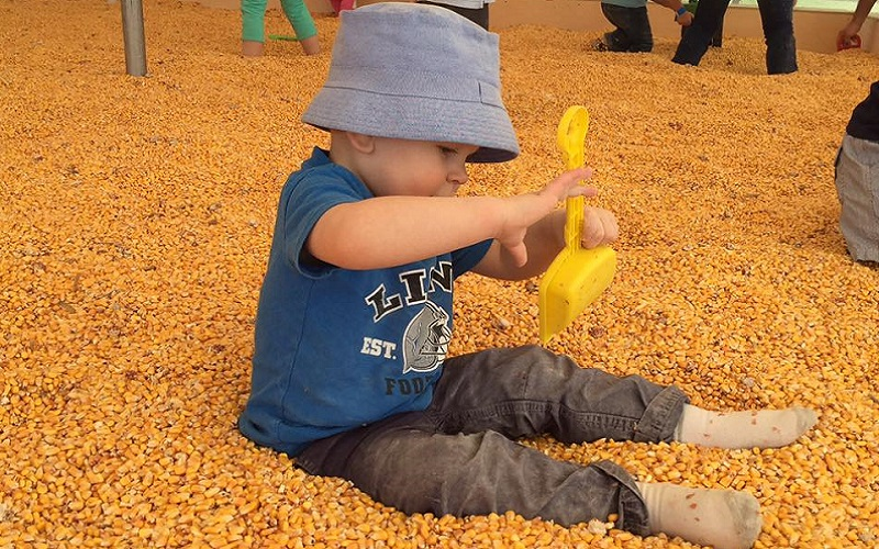 baby boy playing in corn box at gull meadow farms