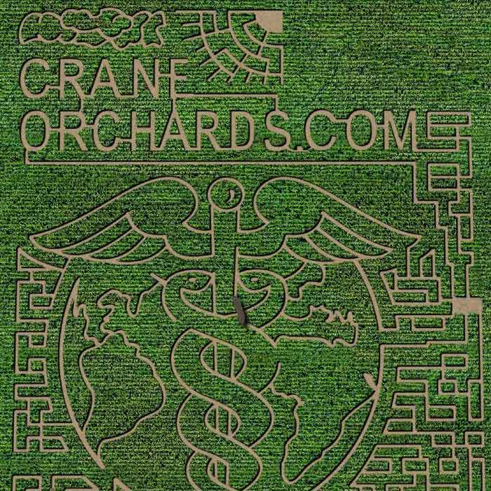 Crane-Orchard-Corn-Maze-2020-we-love-health-care-workers