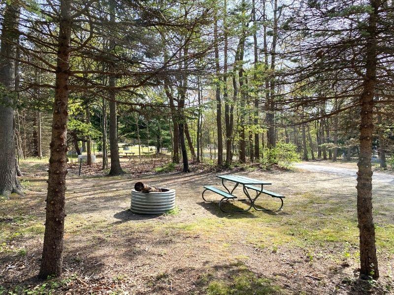 van buren state park camping south haven mi